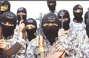 lionceaux du califat cover